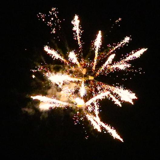 TROPIC PRO 231, Professional fireworks - www saluts lv Pirotehnikas